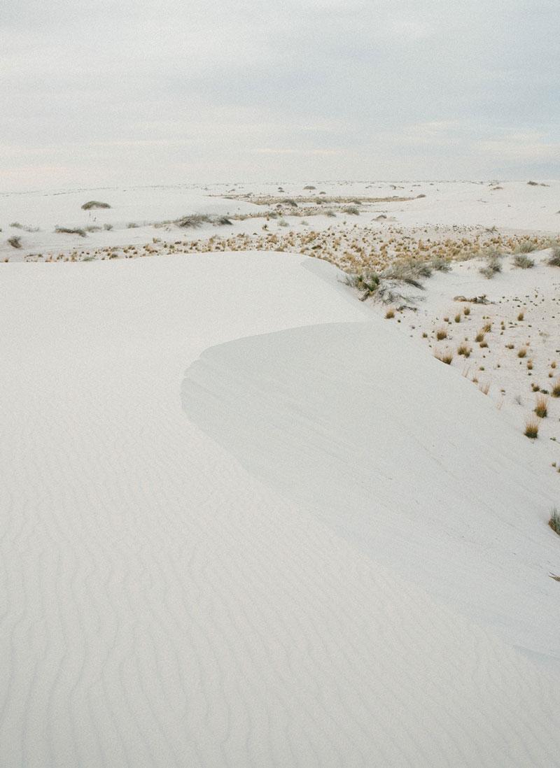 6-Rogan-Experiential-Desert